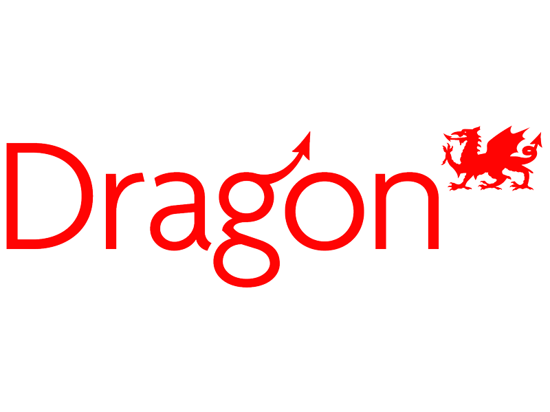 Dragon Cheese Logo
